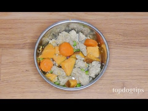 Homemade dog food for itchy skin