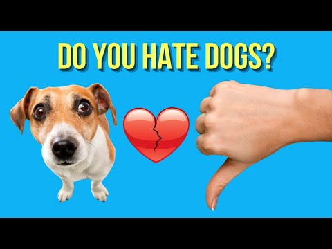 10 reasons why people hate dogs ( really? )