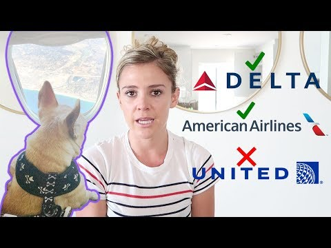 Must know before flying with your dog