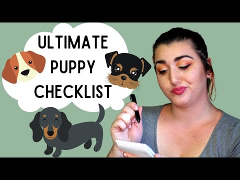Ultimate puppy checklist | everything you need for your new dog