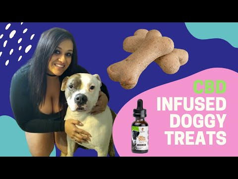 How to make all natural cbd infused dog treats - a doggy treat your pet will love