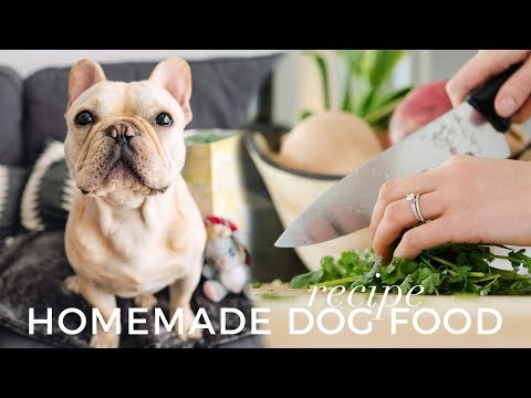Homemade dog food recipe   how to cook food for your frenchie