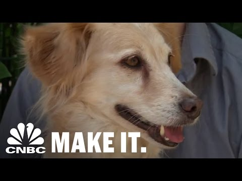 Pot for pets: dog owners use marijuana to treat canine ailments | cnbc make it.