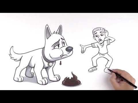 🐶dogs eating poop how to stop ▶︎ discover why do dogs eat poop? (remedy 2019)