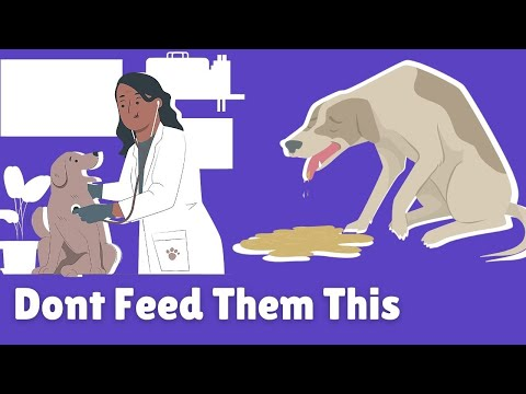 This food's will make your dog very dick
