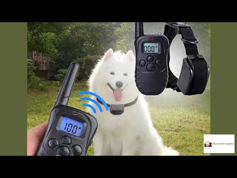 300m electric dog training collar with lcd remote - best dog training collars in 2020