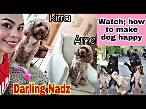 How to make your dog happy |darling nadz