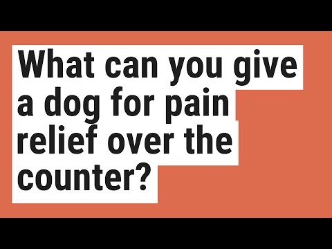 What can you give a dog for pain relief over the counter?