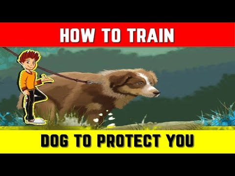 How to train your dog to protect you