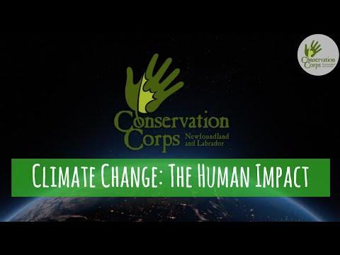 Climate change: the human impact