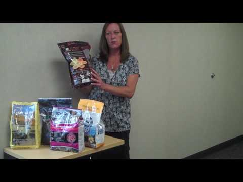 Learn about grain-free dog food