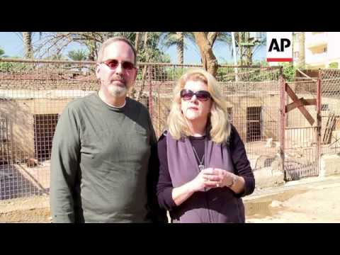 Stray animals find a home in egypt's only pet sanctuary