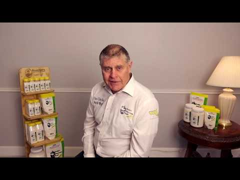 Diatomaceous earth for fleas | what are the benefits and how to use