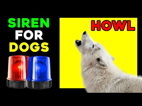 Sirens to make dogs howl | siren for dogs ( howl like a wolf )