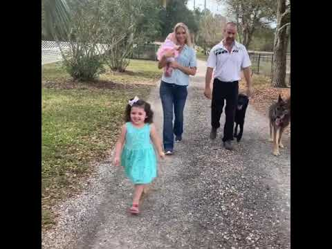 K-9 specialists - family friendly protection dogs