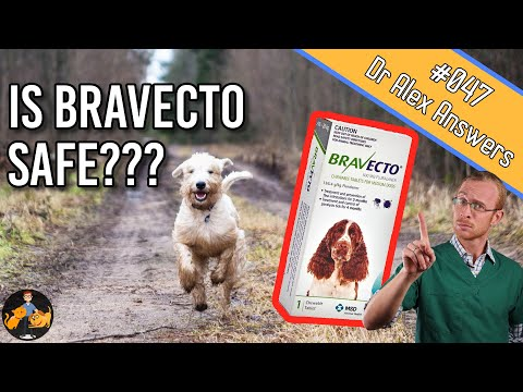 Is bravecto safe for your dog (or will it cause seizures)? - dog health vet advice