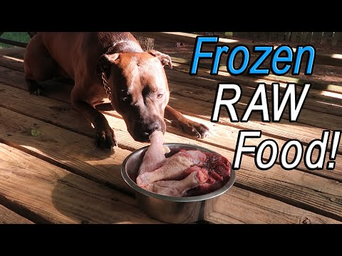 Reasons to feed your dog frozen raw food! (chicken drumsticks, liver and gizzards)