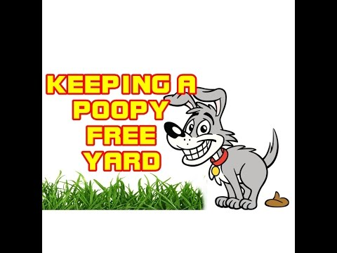 How to keep your yard; dog poop free!