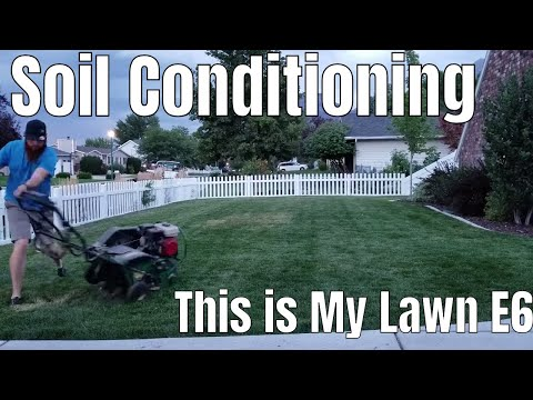 Diy how to fix compact clay soil, shallow roots, dog urine spots and dead grass. this is my lawn