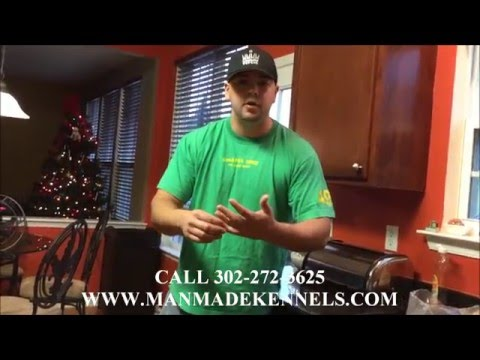 Raw diet for dogs; feeding your dog raw chicken; manmade kennels