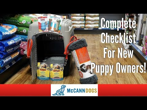 The 9 things you'll need for your new puppy - professional dog training tips