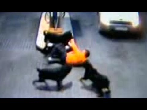 Three rottweilers attack two people at filling station