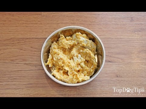 Homemade dog food for diarrhea recipe (helps to firm up stools)