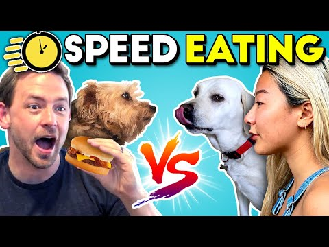 Dogs and humans speed eating challenge!   people vs. dogs vs. food