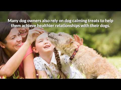 Are dog calming treats safe and which brand is best