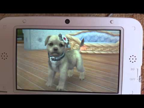How to breed in nintendogs cats