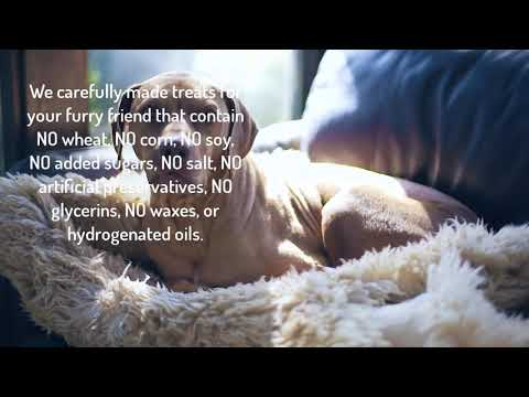 Cbd oil for dogs with anxiety and aggression   hempworx cdb oil chews for dogs