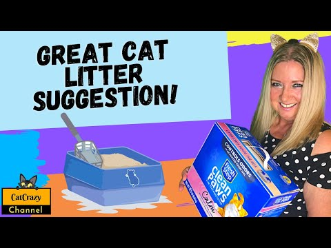 Why do cats use litter boxes and dogs don't? 😻 catcrazy