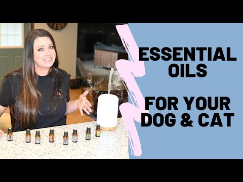Is it ok to use essential oils for your pets ? - the basics