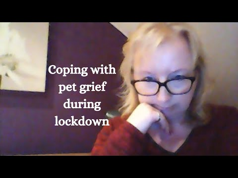 Coping with pet grief during lockdown.