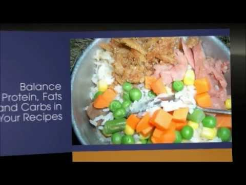 Homemade dog food recipes for small dogs | homemade dog food | healthy homemade dog food | recipes