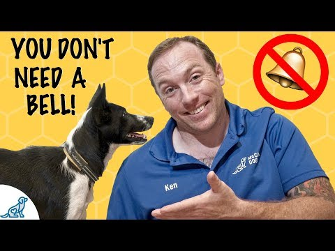 How to teach your dog to ask to go outside - puppy potty training - professional dog training tips