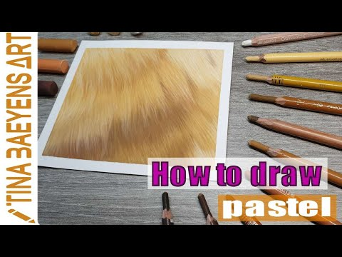 How to draw golden fur with pastel pencils & soft pastel tutorial   tinabaeyensart