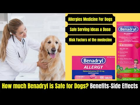 How much benadryl for dogs? benefits-side effects-serving ideas | benadryl dosage for dogs