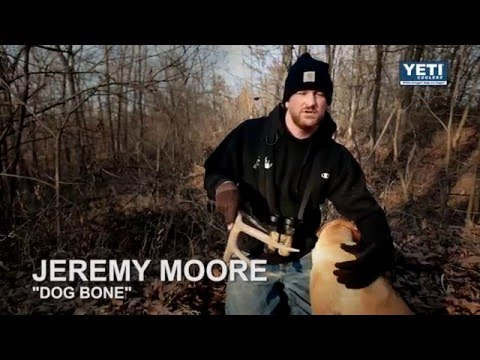 Deer hunting tips | how to train your dog to find shed antlers