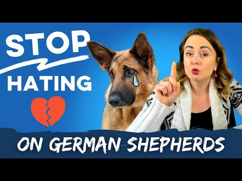 Stop hating on german shepherds | what police uses dogs for and why they choose german shepherds