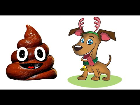 Why dogs eat poop? simple tips to stop it
