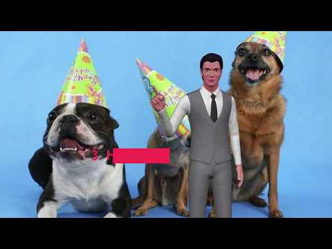 A year of a dog equals seven years of human?