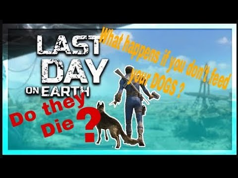 What happens if u don't feed dogs?! - last day on earth survival