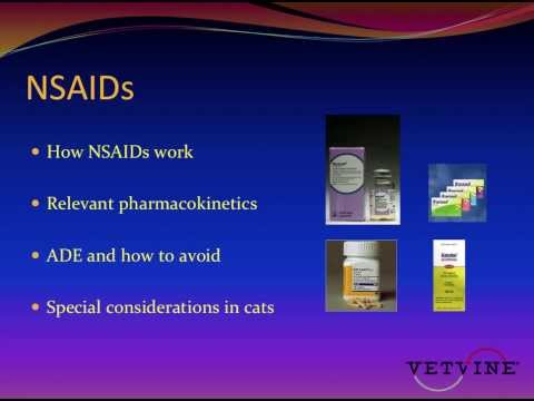 Safe use of non-steroidal anti-inflammatories in dogs and cats