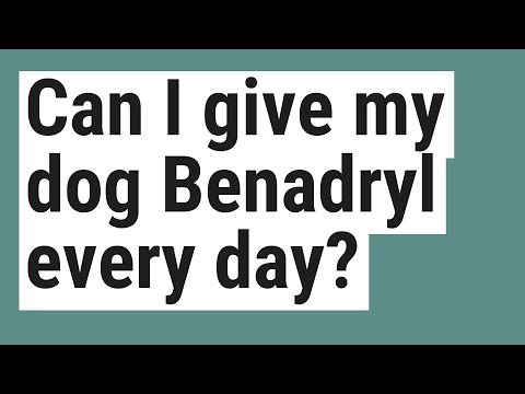 Can i give my dog benadryl every day?